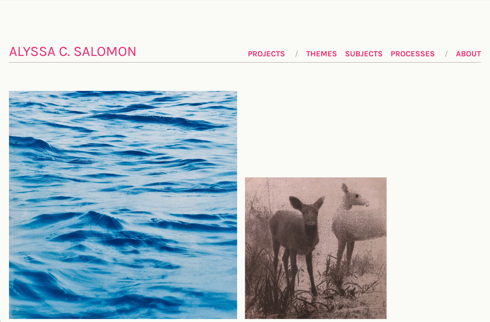 Screenshot of the Alyssa Salomon Website